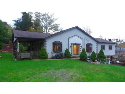 Level Green Single Family Home For Sale: 356 Pine Hollow Rd