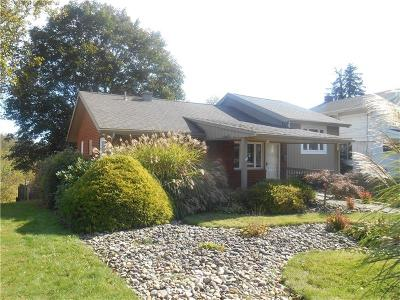 Wilkins Twp Single Family Home For Sale: 312 Delaney Dr