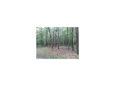 Commercial Lots & Land For Sale: #61 Blueberry Way Stonycreek Township