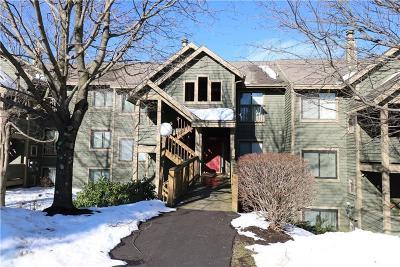 Hidden Valley Condo For Sale: 5026 Summit View Court
