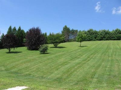 Somerset/Cambria County Residential Lots & Land For Sale: 1118 Huckleberry Highway
