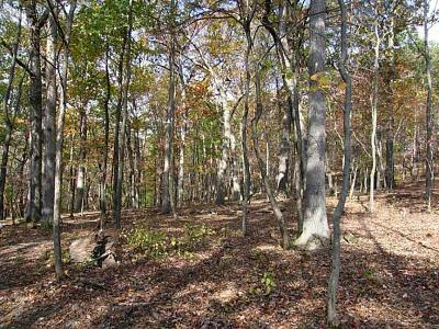 Westmoreland County Residential Lots & Land For Sale: Lot #6 3512 Regent Court