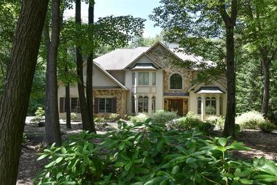 Somerset/Cambria County Single Family Home For Sale: 2328 South Ridge Dr.