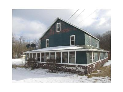 Somerset/Cambria County Single Family Home For Sale: 160 Simpson Street