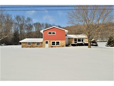 Somerset/Cambria County Single Family Home For Sale: 5799 Somerset Pike