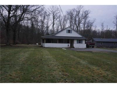 Westmoreland County Single Family Home For Sale: 548 Trout Ave