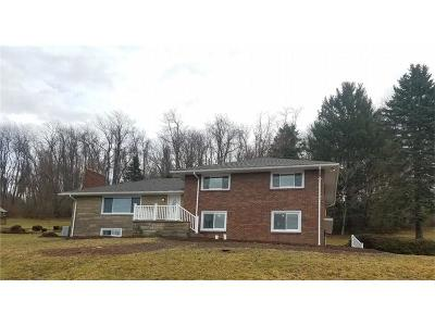 Westmoreland County Single Family Home For Sale: 187 S Thompson Ln