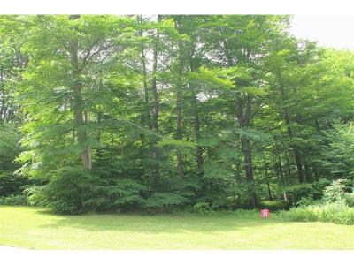 Somerset/Cambria County Residential Lots & Land For Sale: Lot # 31 Grouse Point