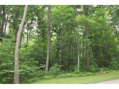 Somerset/Cambria County Residential Lots & Land For Sale: Lot#30 Grouse Point