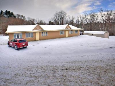Murrysville Single Family Home For Sale: 5499 Saltsburg Road