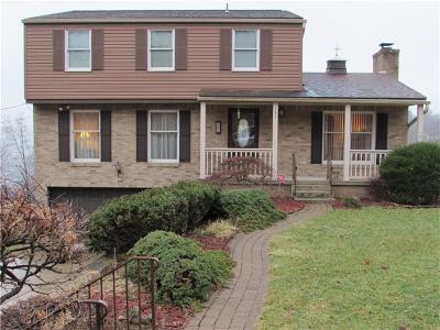 Wilkins Twp Single Family Home For Sale: 131 Curry Avenue