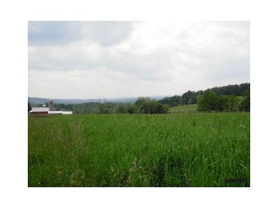 Somerset/Cambria County Residential Lots & Land For Sale: Lot #8 Lyons Road