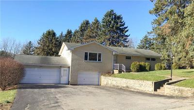 North Huntingdon Single Family Home For Sale: 2820 Turner Valley