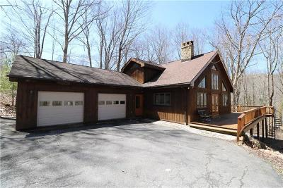 Hidden Valley Single Family Home For Sale: 354 Lake Road