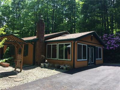 Indian Lake Boro Single Family Home For Sale: 761 West Shore Trail Ext