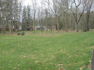 Westmoreland County Residential Lots & Land For Sale: Lot 1-4 Old Airport Rd.