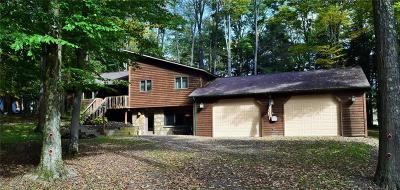 Indian Lake Boro Single Family Home For Sale: 109 Fairway East