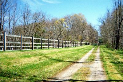 Somerset/Cambria County Residential Lots & Land For Sale: 1 Circle