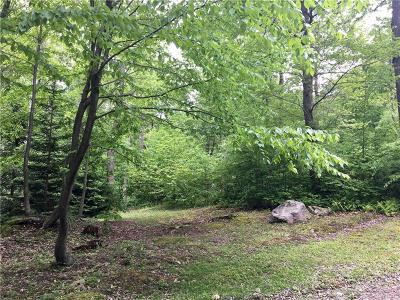 Somerset/Cambria County Residential Lots & Land For Sale: Lot 603 Aspen Mt. Rd.