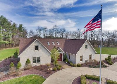 Murrysville Single Family Home For Sale: 6390 Thompson Rd