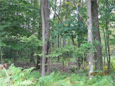 Somerset/Cambria County Residential Lots & Land For Sale: Chickadee Lane