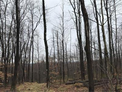 Somerset/Cambria County Residential Lots & Land For Sale: 00 Kuhntown Rd