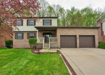 Murrysville Single Family Home For Sale: 125 Apple Hill Drive