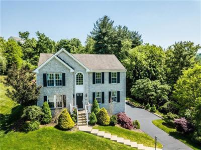 Plum Boro Single Family Home For Sale: 1049 Balkan Drive
