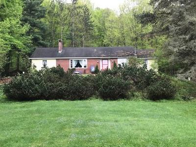 Somerset/Cambria County Single Family Home For Sale: 355 Lake Shore Drive
