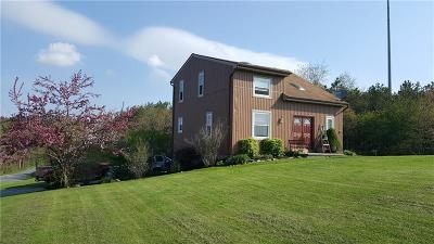 Somerset/Cambria County Single Family Home For Sale: 144 Worthington Lane