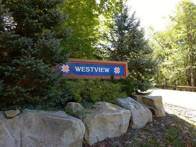 Somerset/Cambria County Residential Lots & Land For Sale: Lot #4 Westview Drive