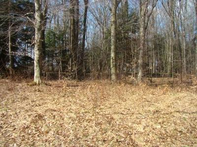 Somerset/Cambria County Residential Lots & Land For Sale: 3 & 22 Lake Shore Road