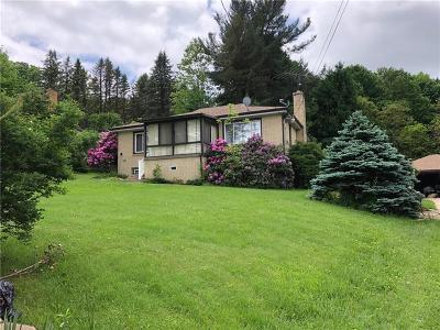 Single Family Home For Sale: 119 Old State Route 66