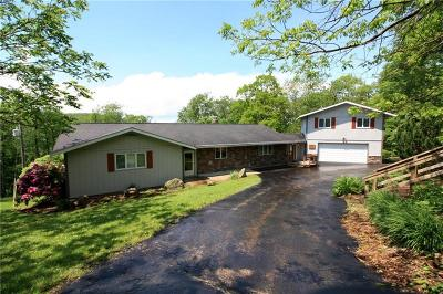 Saltlick Twp PA Single Family Home For Sale: $375,000