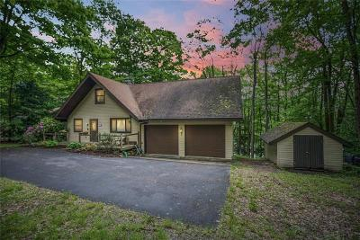 Indian Lake Boro Single Family Home For Sale: 110 Syracuse Path