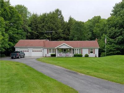 Indian Lake Boro Single Family Home For Sale: 305 W Airpark Rd