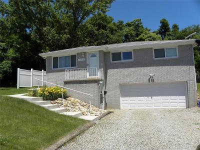 Westmoreland County Single Family Home For Sale: 13370 St Clair Dr