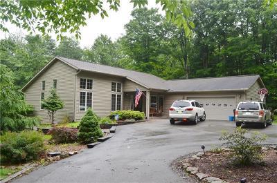 Indian Lake Boro Single Family Home For Sale: 810 NE South Shore Trail