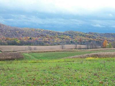 Somerset/Cambria County Residential Lots & Land For Sale: Kuhntown Road