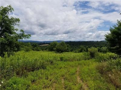 Westmoreland County Residential Lots & Land For Sale: Lot Meadow Spring/Beatty