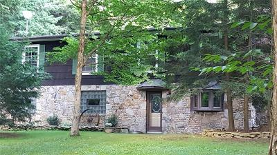 Indian Lake Boro Single Family Home For Sale: 418 Peninsula Drive