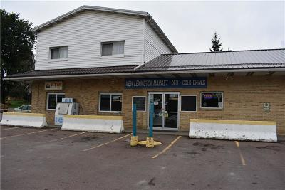 Commercial For Sale: 2759 Scullton Rd