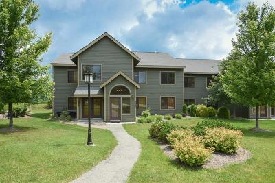 Somerset/Cambria County Condo For Sale: 5141 Summit Place
