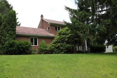 Somerset/Cambria County Single Family Home For Sale: 204 Palliser Street