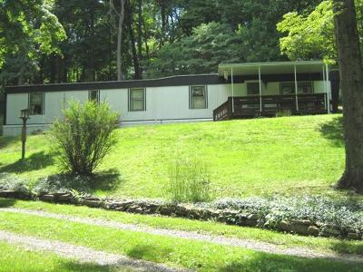 Single Family Home For Sale: 151 Wagner Rd
