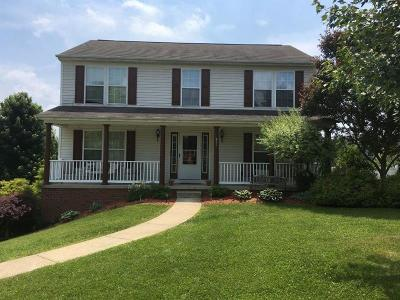Single Family Home For Sale: 911 Arberdeen Drive