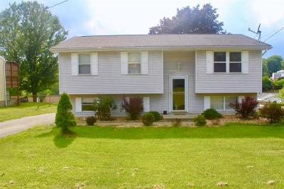 Single Family Home For Sale: 116 Fosterville Rd