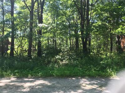 Somerset/Cambria County Residential Lots & Land For Sale: 861 Matterhorn Rd