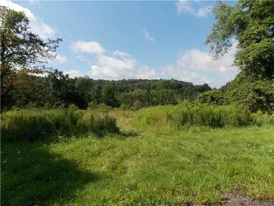 Westmoreland County Residential Lots & Land For Sale: 2048 Spooky Hollow Rd