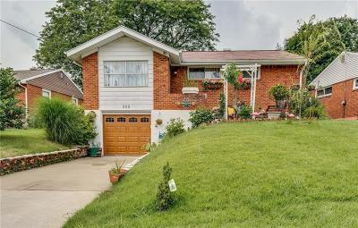 Wilkins Twp Single Family Home For Sale: 305 Delaney Drive